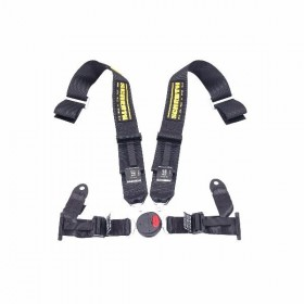 Schroth 4-Point Safety Harness