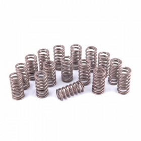 Piper Uprated Single Valve Spring Set